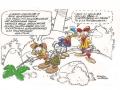 vignetta Pico-